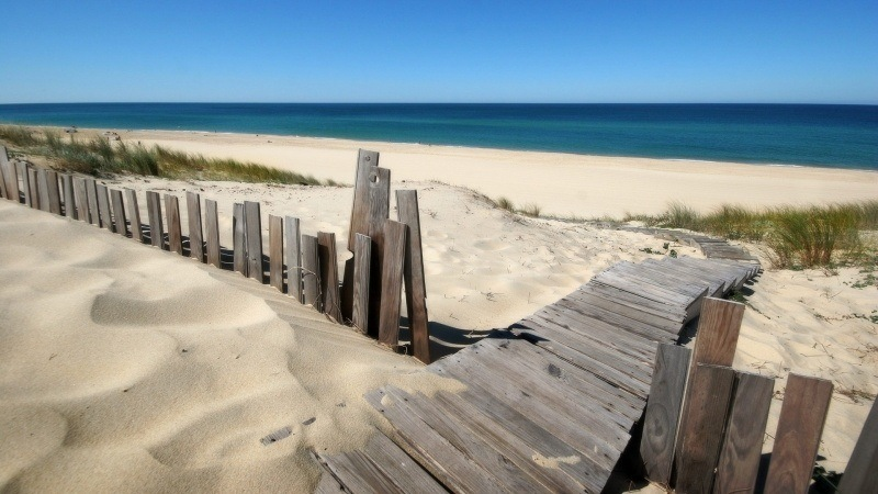 Plage de sable dune wallpaper