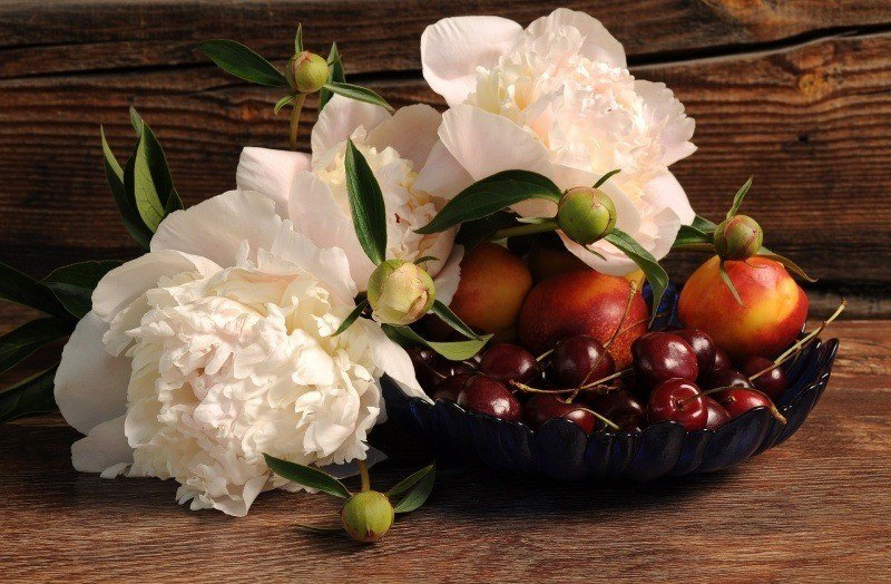 photo art pivoines blanches fleurs fruit