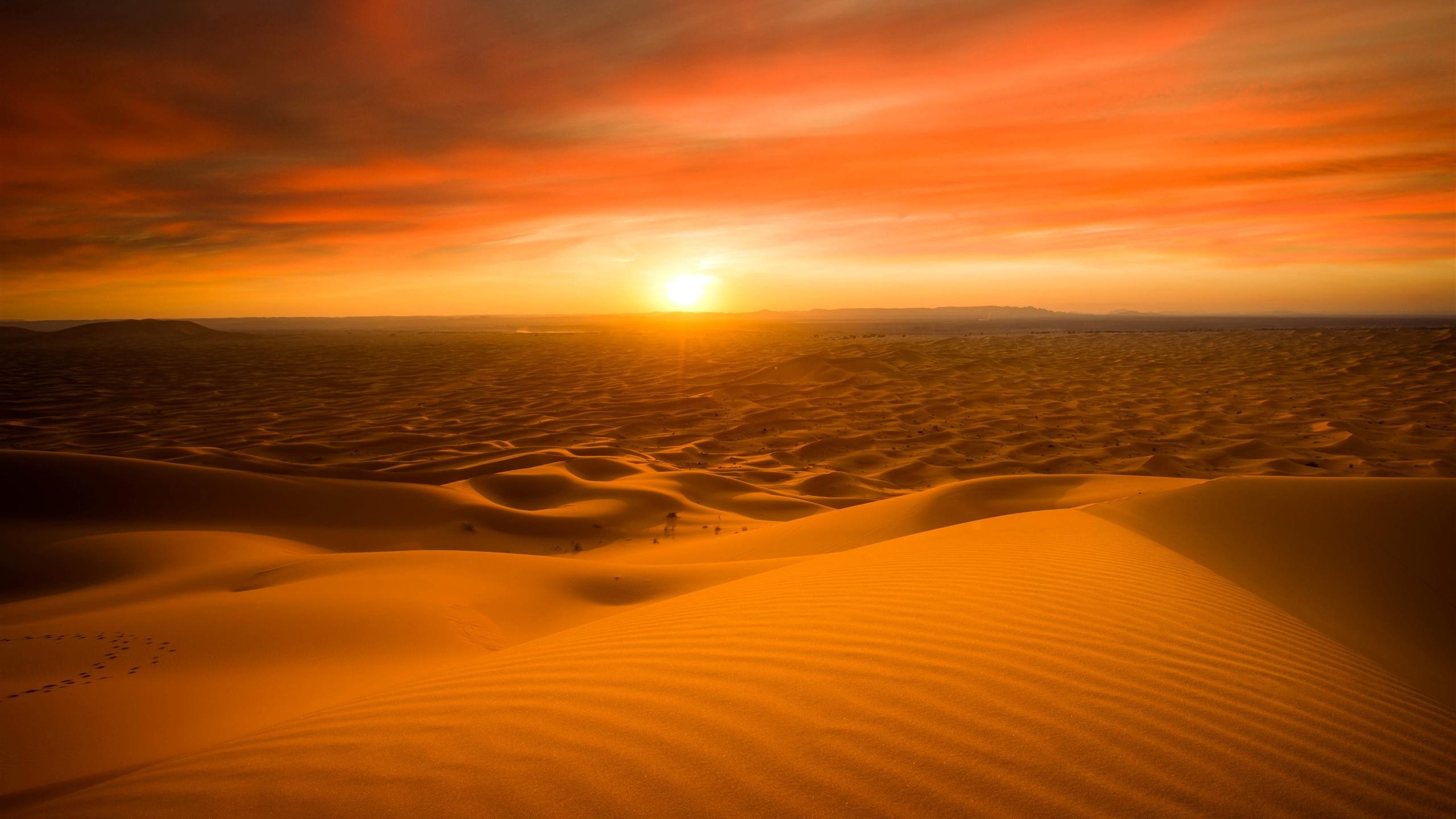 Desert Fond Ecran Hd