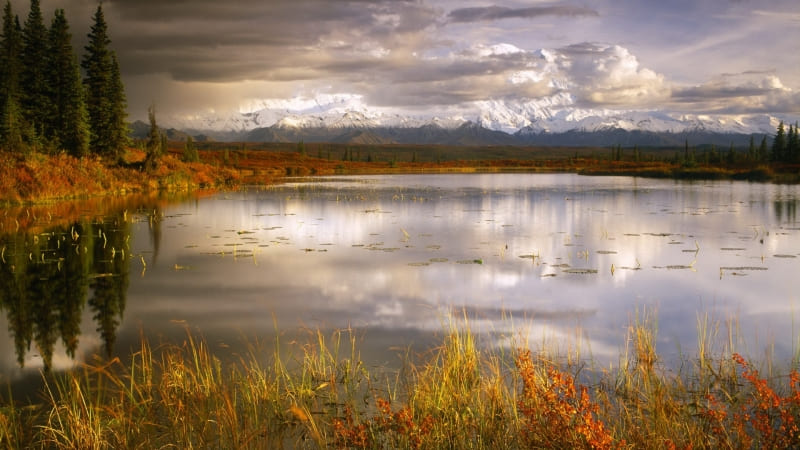 automne rives lac et montagne photo wallpaper